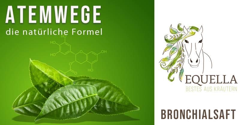 Bronchialsaft-Slider-Equella-Atemwege-Formel